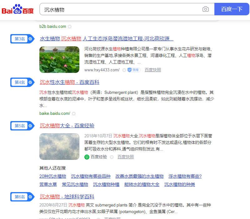 沉水植物优化案例